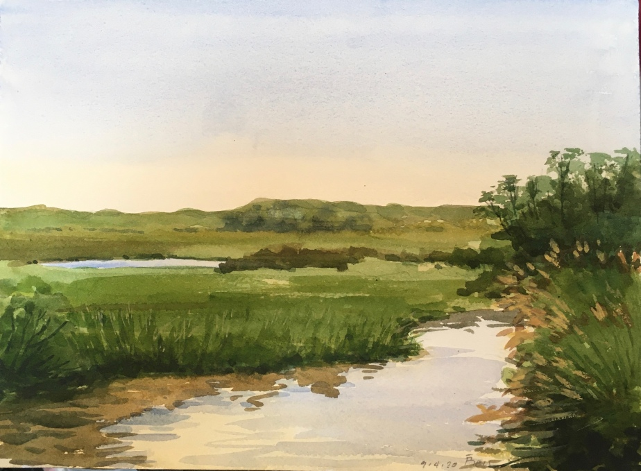 Jersey Swamp